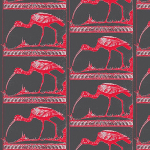 scarlet ibis - scarlet