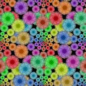 Dandelion Rainbow 2