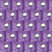 Sheep on purple