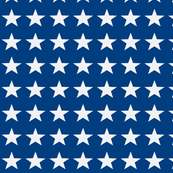 Petit Four white star on blue for 1600 Quilts of Valor-ch