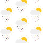 Sunny Stormy