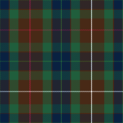 Fraser modern tartan