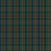 1/3 scale Fraser modern tartan