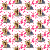 Yorkie Pink Hearts Small Print