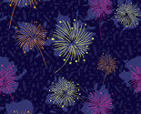Rrocket_fireworks_small2_vv_thumb