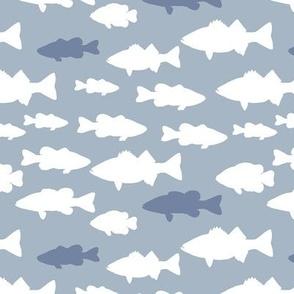fish // blue