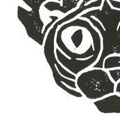 Fernie Cat