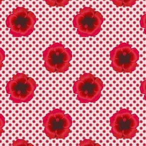 Hibiscus on dots