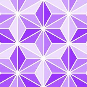 isosceles SC3i - violet