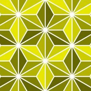 isosceles SC3i : yellow olive