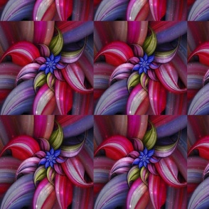 Galactic Spiral Flower