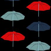 Umbrellas on black