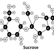 sucrose_black_and_white
