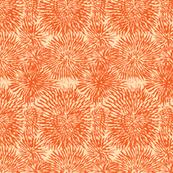 anemone burst orange