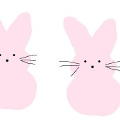 Small Pink Bunnies