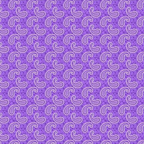 ditsy paisely purple