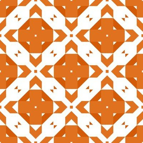 Funky Geometric ~ Many Oranges
