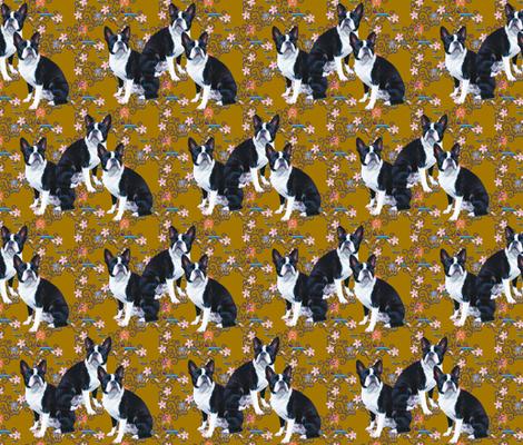 boston_terriers_pattern