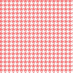 Houndstooth Coral
