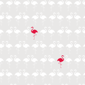 flamingo family - grey and pink