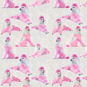 Pink Poodles