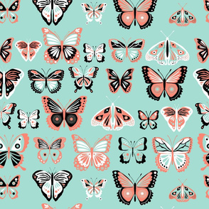 fly_buterfly_coral_and_mint