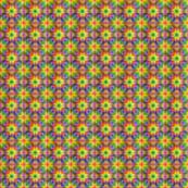 Rainbow Stars Coordinate