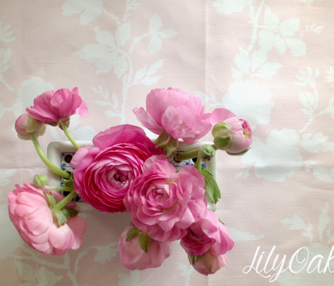 Ames Chinoiserie in peony pink