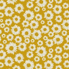 daisies on yellow