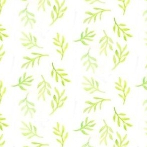Sprout - Spring 2015