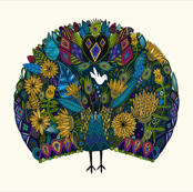 peacock garden custom pillow panel