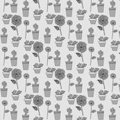 Cacti Flo...