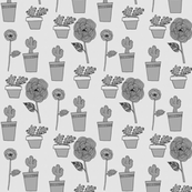 Cacti Florals in Shades of Grey