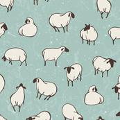 Herd of sheep in pasture
