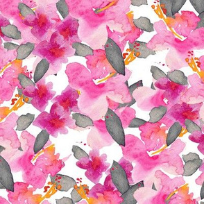 Pink_Hibiscus Garden