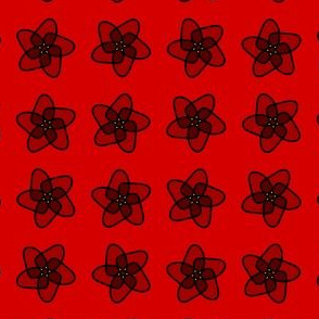 red starryflower