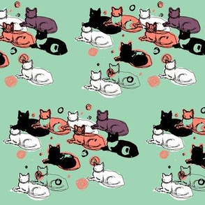 Mint, coral, black, and white cats