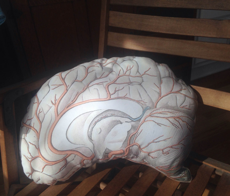 Brain Pillow Side 1