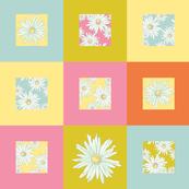 Daisies - plain