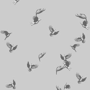 flock of birds in grey