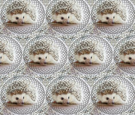 hedgehog swirl