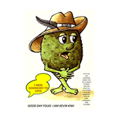 Kevin Kiwi a cuddly Fruity Character ready to cut out and Sew -ed