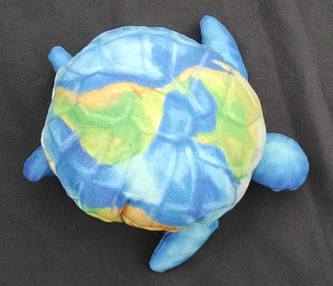 Rthe_cosmic_turtle_comment_597677_preview