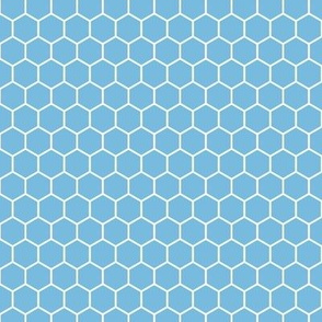 Honeycomb, Wide in Blue