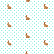 Bunny Polka Dot Aquamarine on White