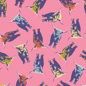 Highlander - pink
