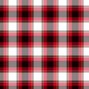 Black and White and Red All Over Plaid