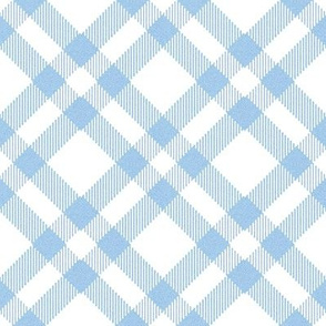 Blue and White Plaid