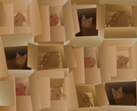 Rrcubist_cats_in_cardboard_boxes_thumb