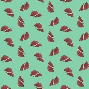 liver in seafoam